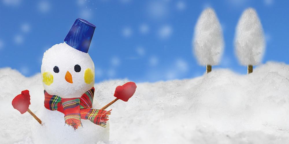 雪景色の中の雪だるま